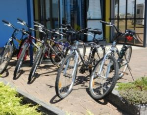 George Town to Low Head Walking and Cycling Trail - Accommodation in Surfers Paradise