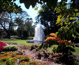 George Brown Darwin Botanic Gardens - Accommodation in Surfers Paradise