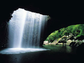 Natural Bridge Springbrook National Park - Accommodation in Surfers Paradise