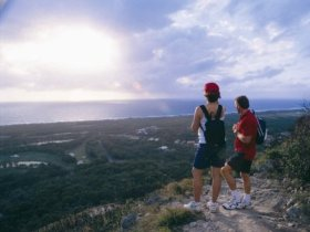 Mount Coolum National Park - Accommodation in Surfers Paradise