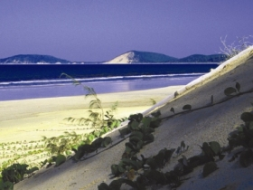 Cooloola Great Sandy National Park - Accommodation in Surfers Paradise