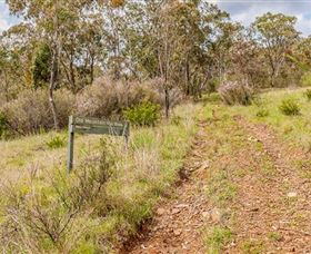 Old Mountain Road Walking Track - Accommodation in Surfers Paradise