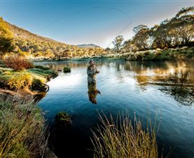 Fly Fishing Tumut - Accommodation in Surfers Paradise