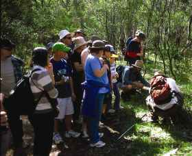 Warrumbungle National Park Discovery Program - Accommodation in Surfers Paradise