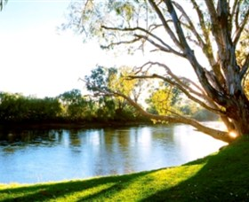 Albury - Murray River Precinct - Accommodation in Surfers Paradise