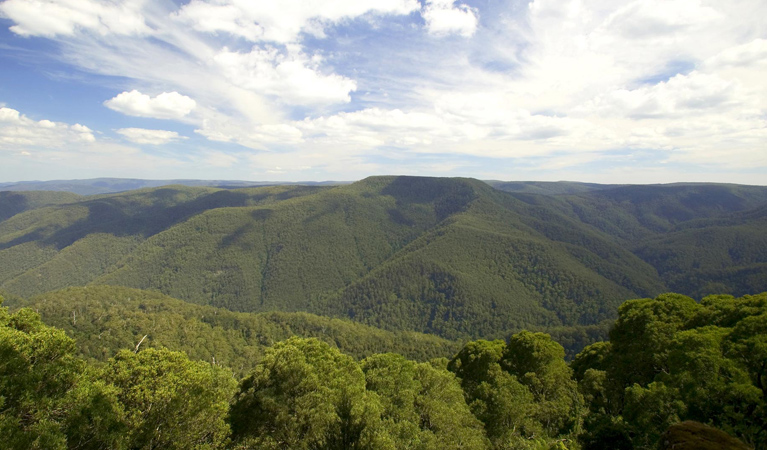 Barrington Tops National Park - Accommodation in Surfers Paradise