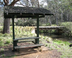 Barrington Tops State Forest - Accommodation in Surfers Paradise
