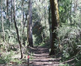 Box Vale Mine Walking Track and Lookout - Accommodation in Surfers Paradise