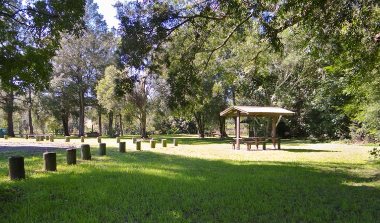 Moore Park picnic area - Accommodation in Surfers Paradise
