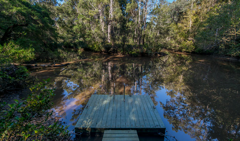 Brimbin Nature Reserve - Accommodation in Surfers Paradise