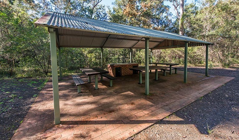 Brimbin picnic area - Accommodation in Surfers Paradise
