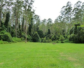 Kerewong State Forest - Accommodation in Surfers Paradise