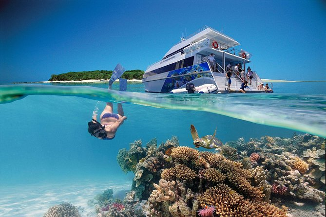 3-Day Southern Great Barrier Reef Tour Including Lady Musgrave Island - Accommodation in Surfers Paradise