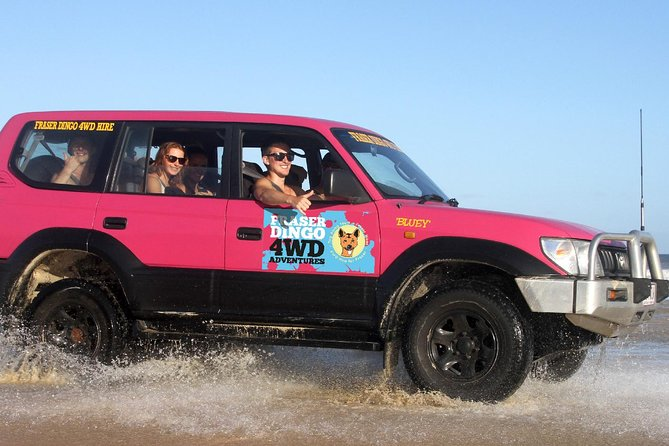 2-Day Fraser Island 4WD Tag-Along Tour at Beach House from Hervey Bay - Accommodation in Surfers Paradise