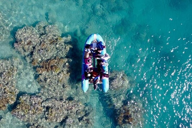 Glass-bottom boat tour with Whitehaven Beach - Accommodation in Surfers Paradise