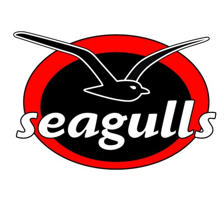 Seagulls Club - Accommodation in Surfers Paradise