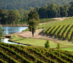 Brookhampton Estate Vineyard - Accommodation in Surfers Paradise