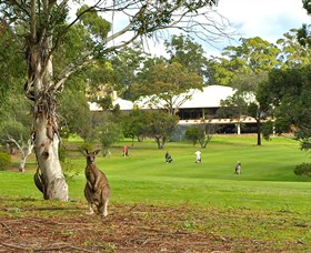 Pambula Merimbula Golf Club - Accommodation in Surfers Paradise