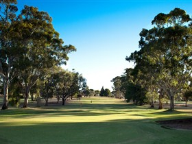 Loxton Golf Club - Accommodation in Surfers Paradise