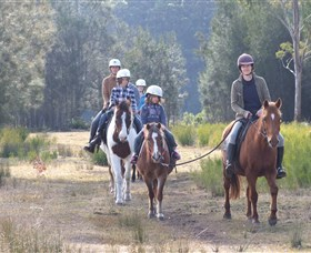 Horse Riding at Oaks Ranch and Country Club - Accommodation in Surfers Paradise