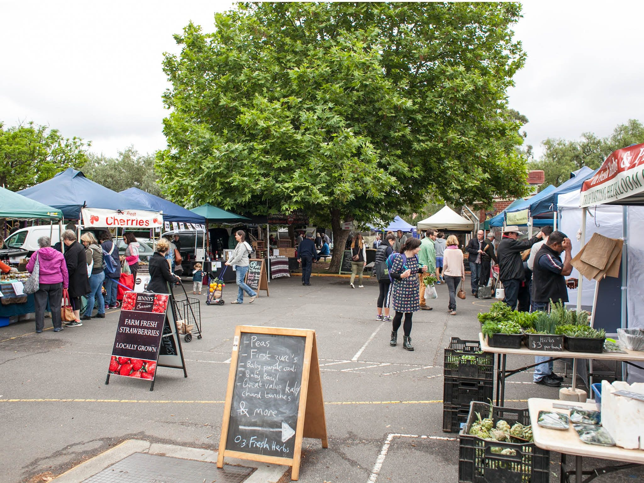 Alphington Farmers' Market - Accommodation in Surfers Paradise