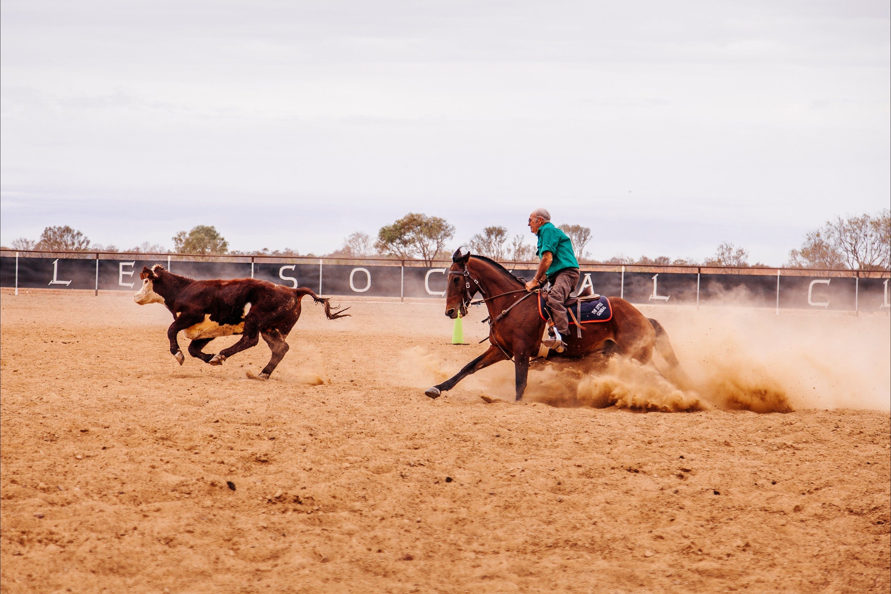 Birdsville Campdraft  Rodeo and Bronco Branding - Accommodation in Surfers Paradise