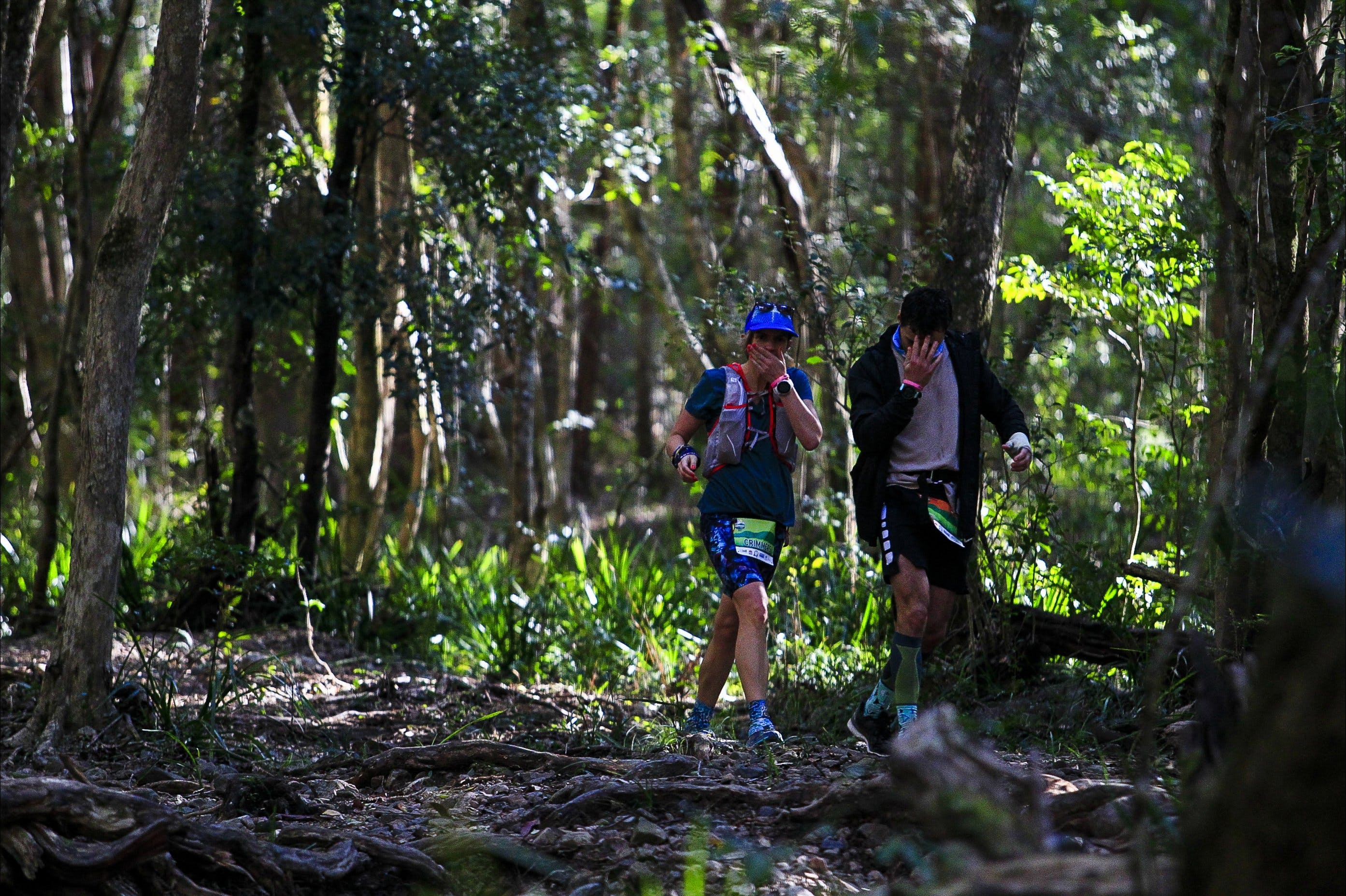 Elephant Trail Race - Accommodation in Surfers Paradise