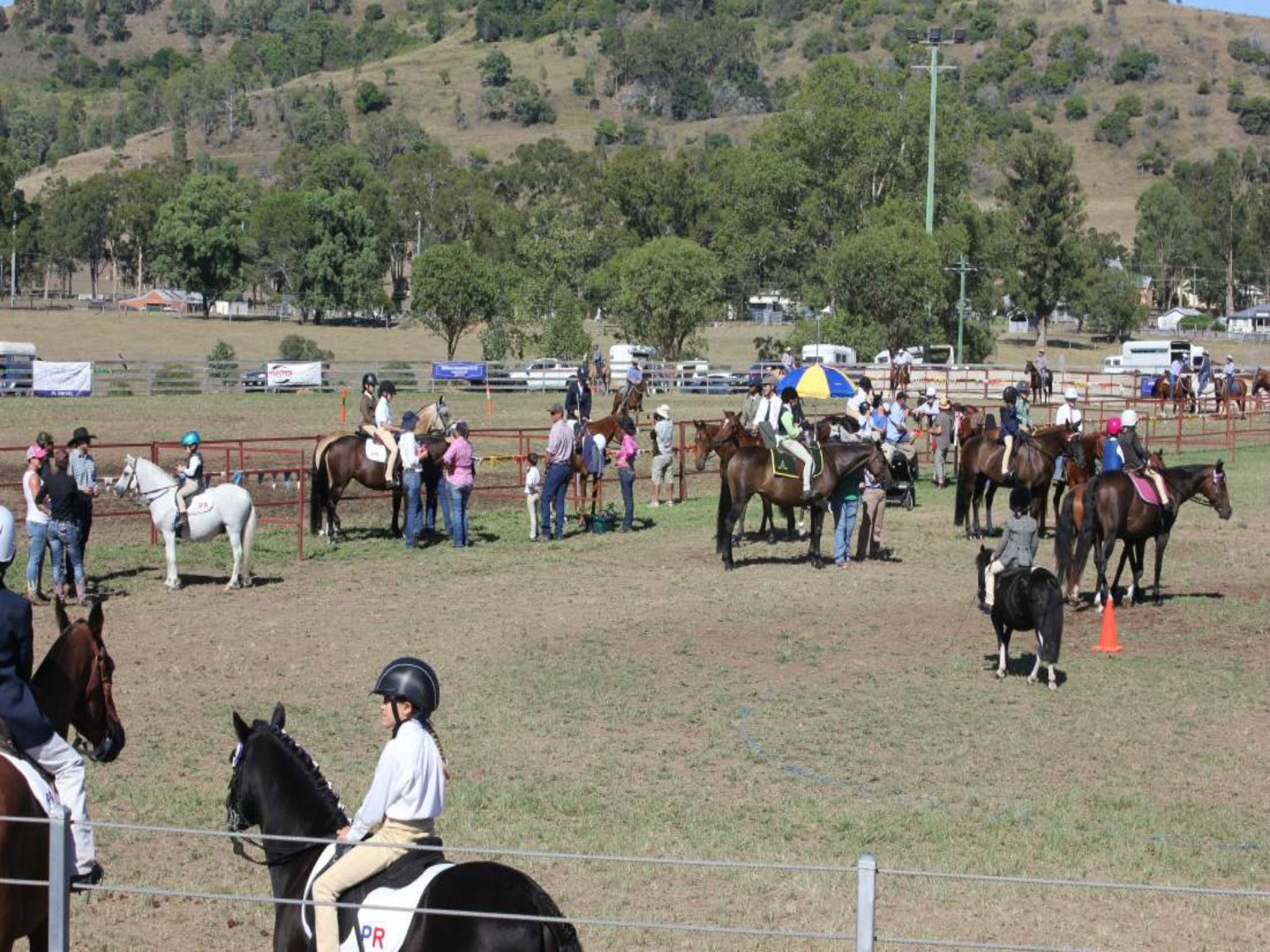 Gresford Agricultural Show - Accommodation in Surfers Paradise
