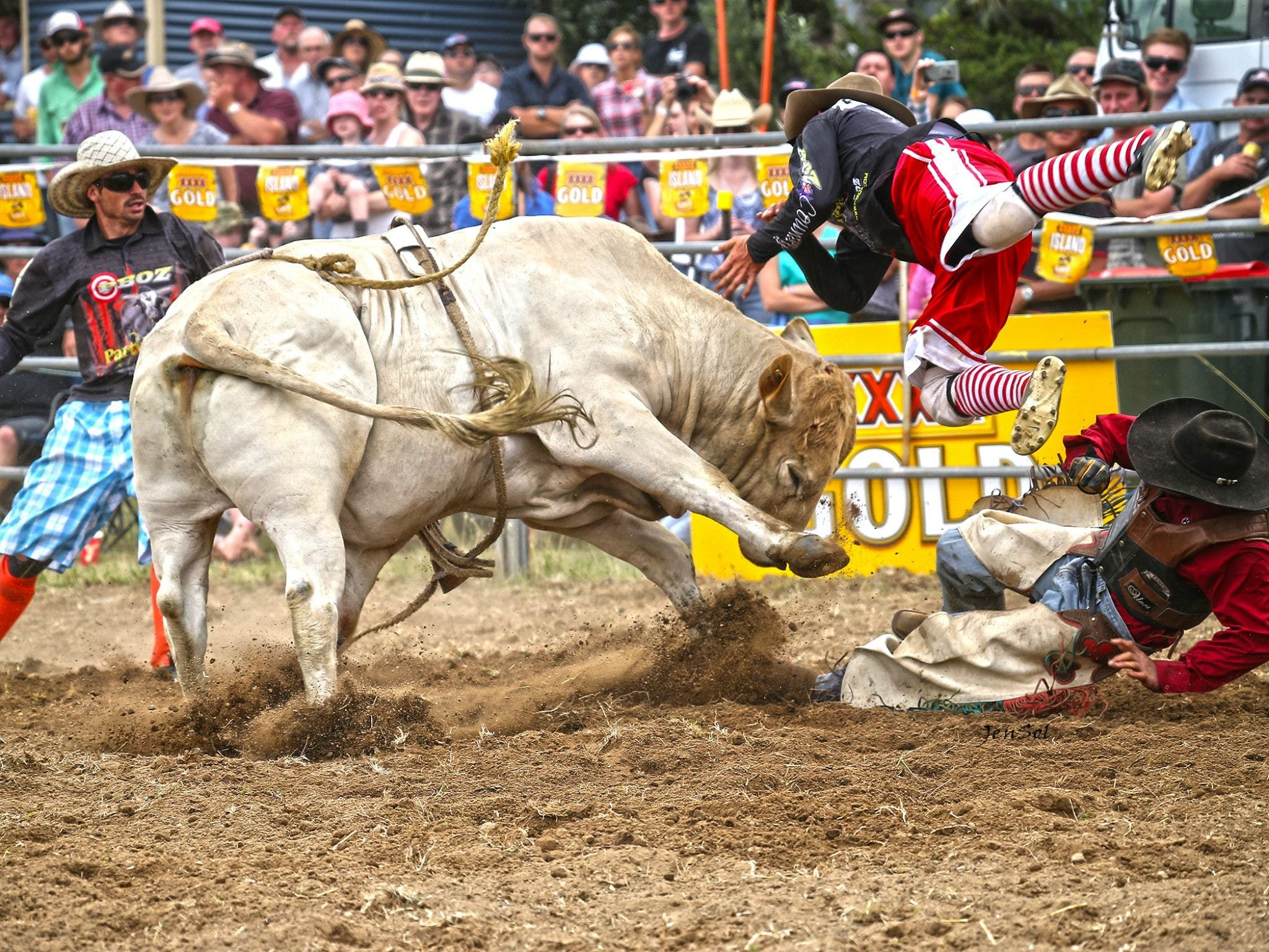Jindabyne's Man From Snowy River Rodeo - Accommodation in Surfers Paradise