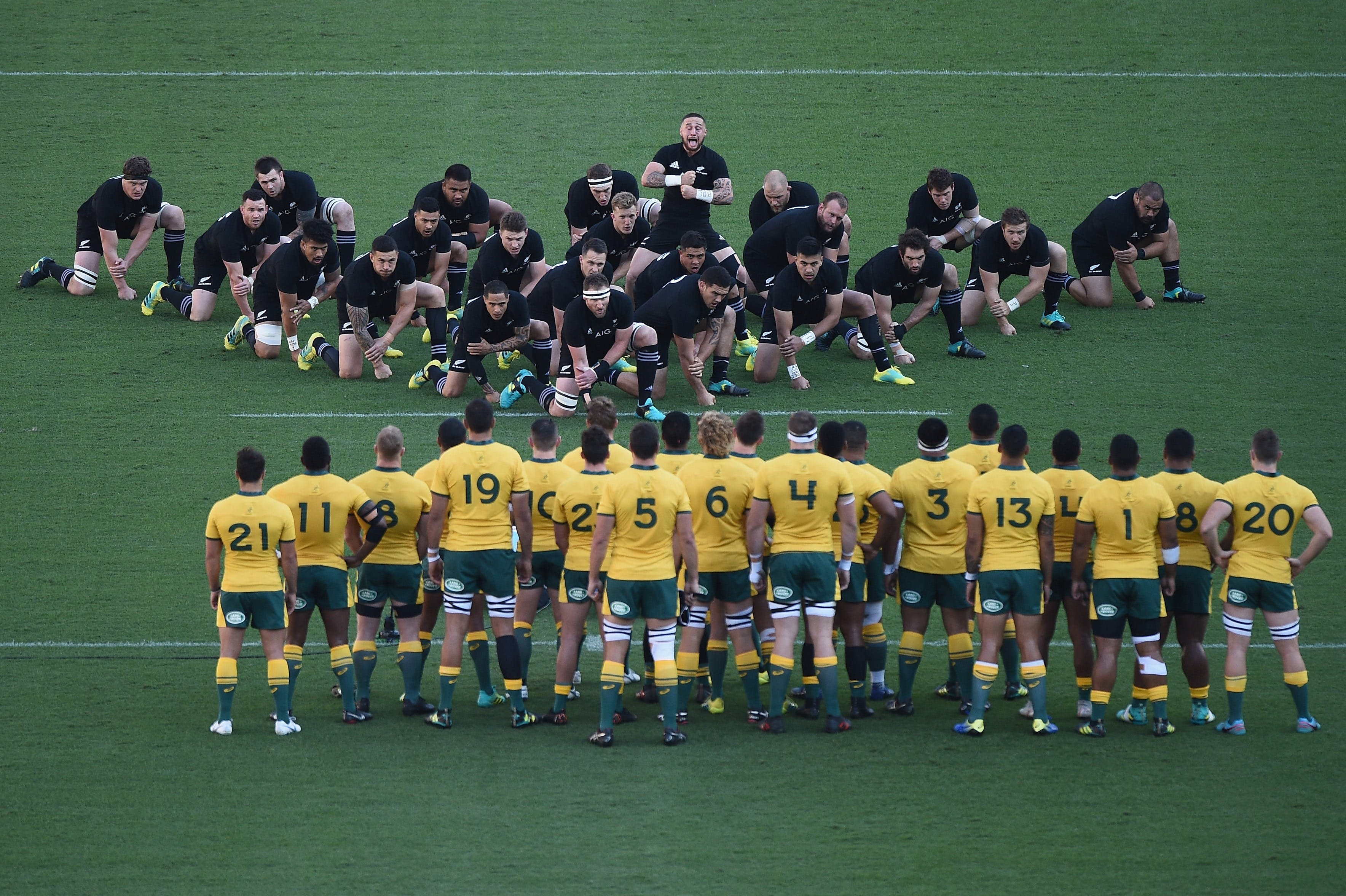 Bledisloe Cup Qantas Wallabies versus All Blacks - Accommodation in Surfers Paradise