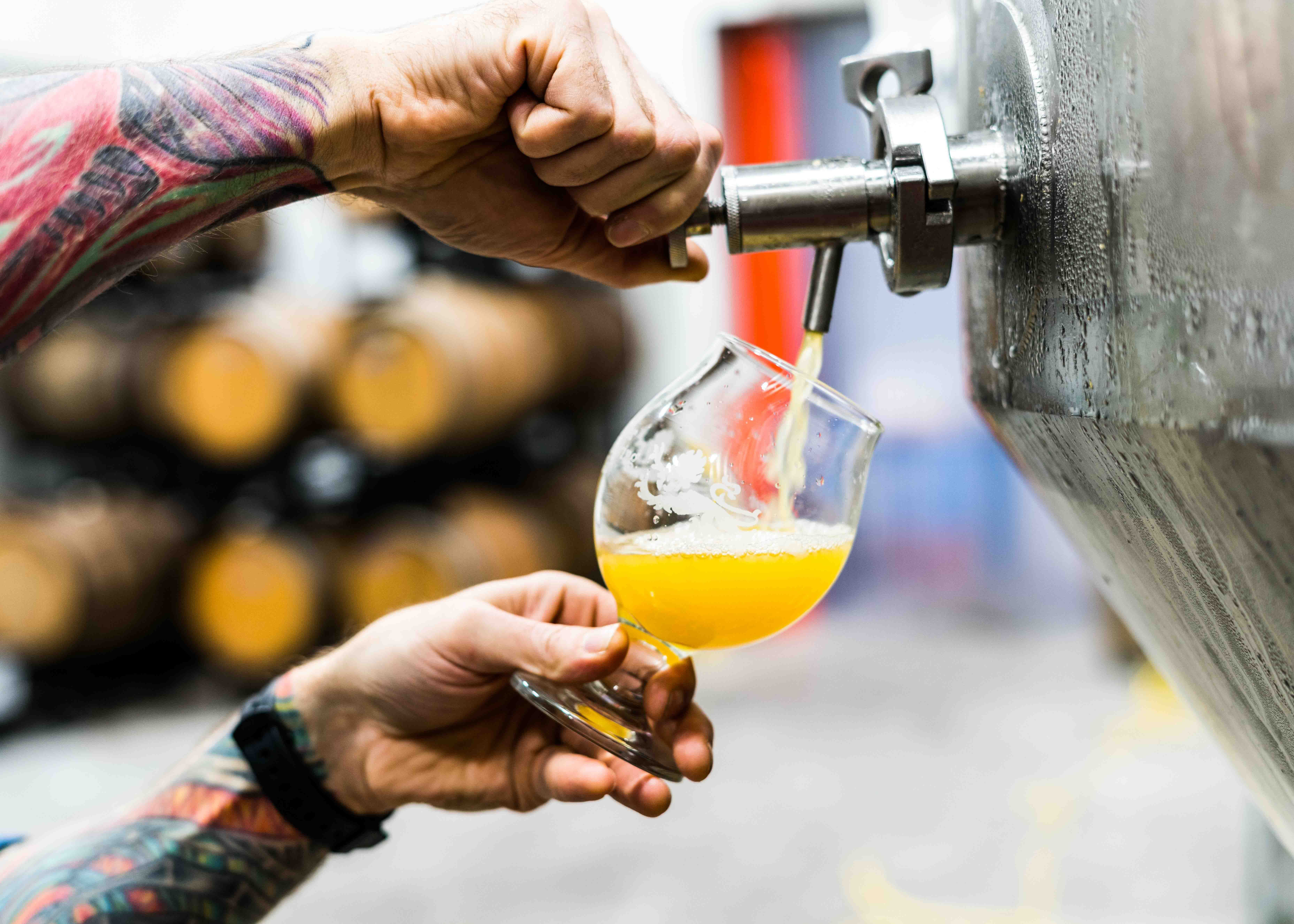 Brewing for Beginners - Accommodation in Surfers Paradise