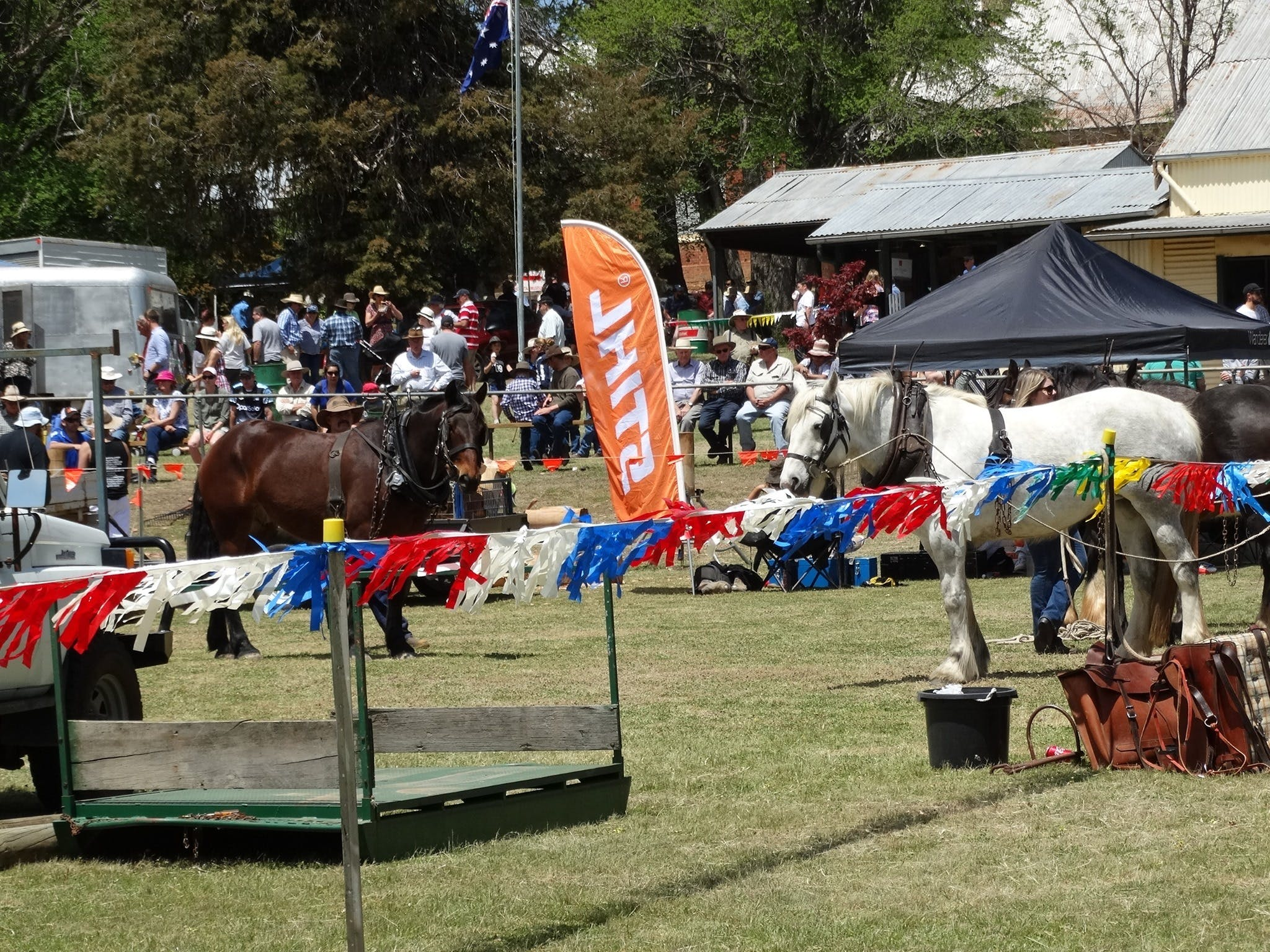 Carcoar Show - Accommodation in Surfers Paradise