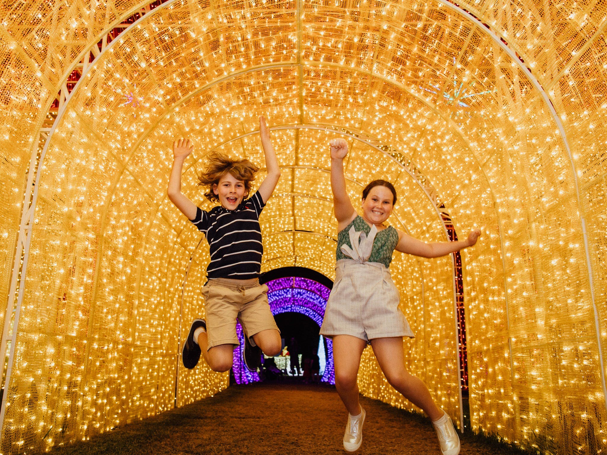 Christmas Lights Spectacular New Year's Eve at Hunter Valley Gardens - Accommodation in Surfers Paradise