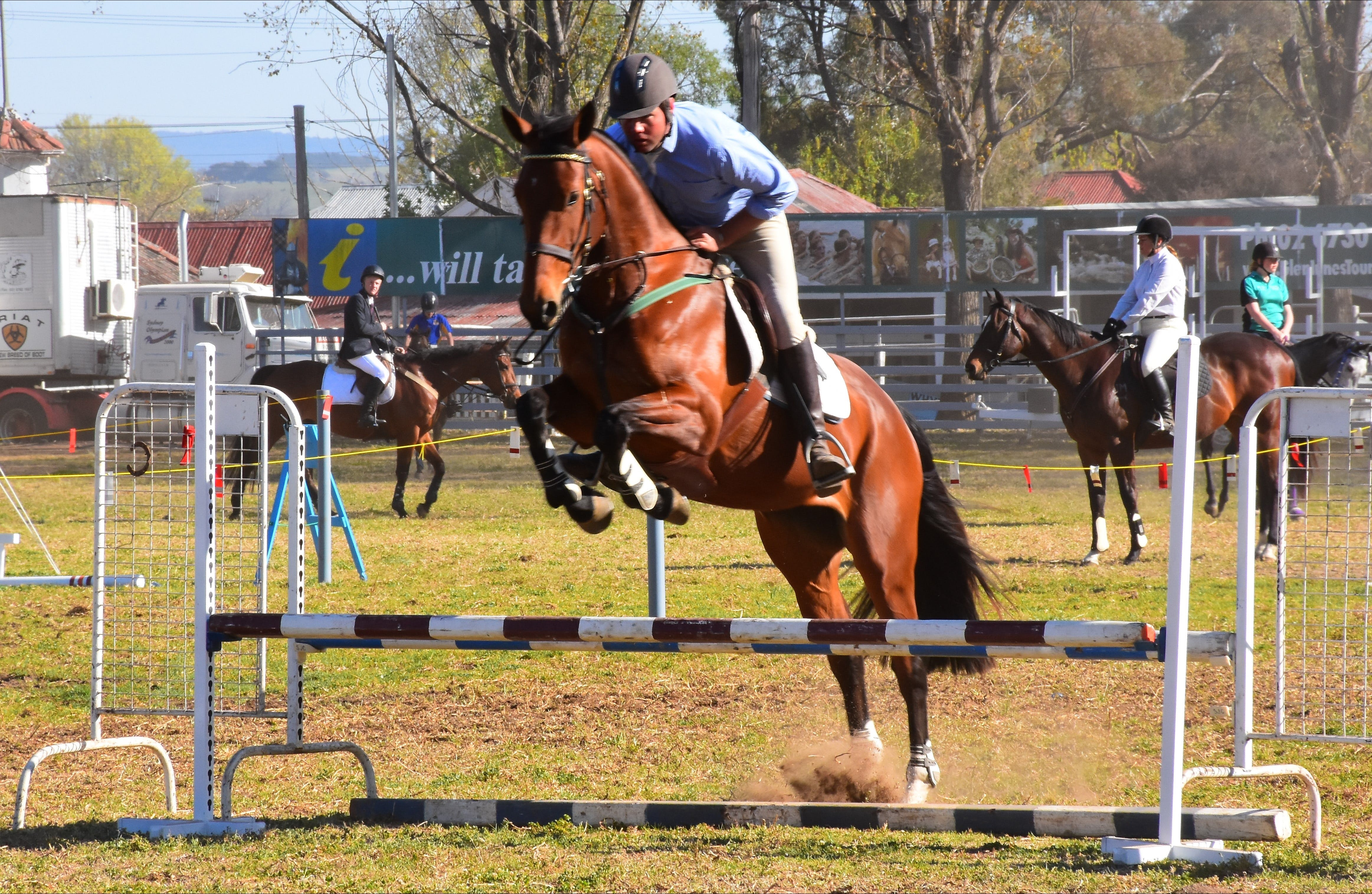 Glen Innes Pastoral and Agricultural Show - Accommodation in Surfers Paradise