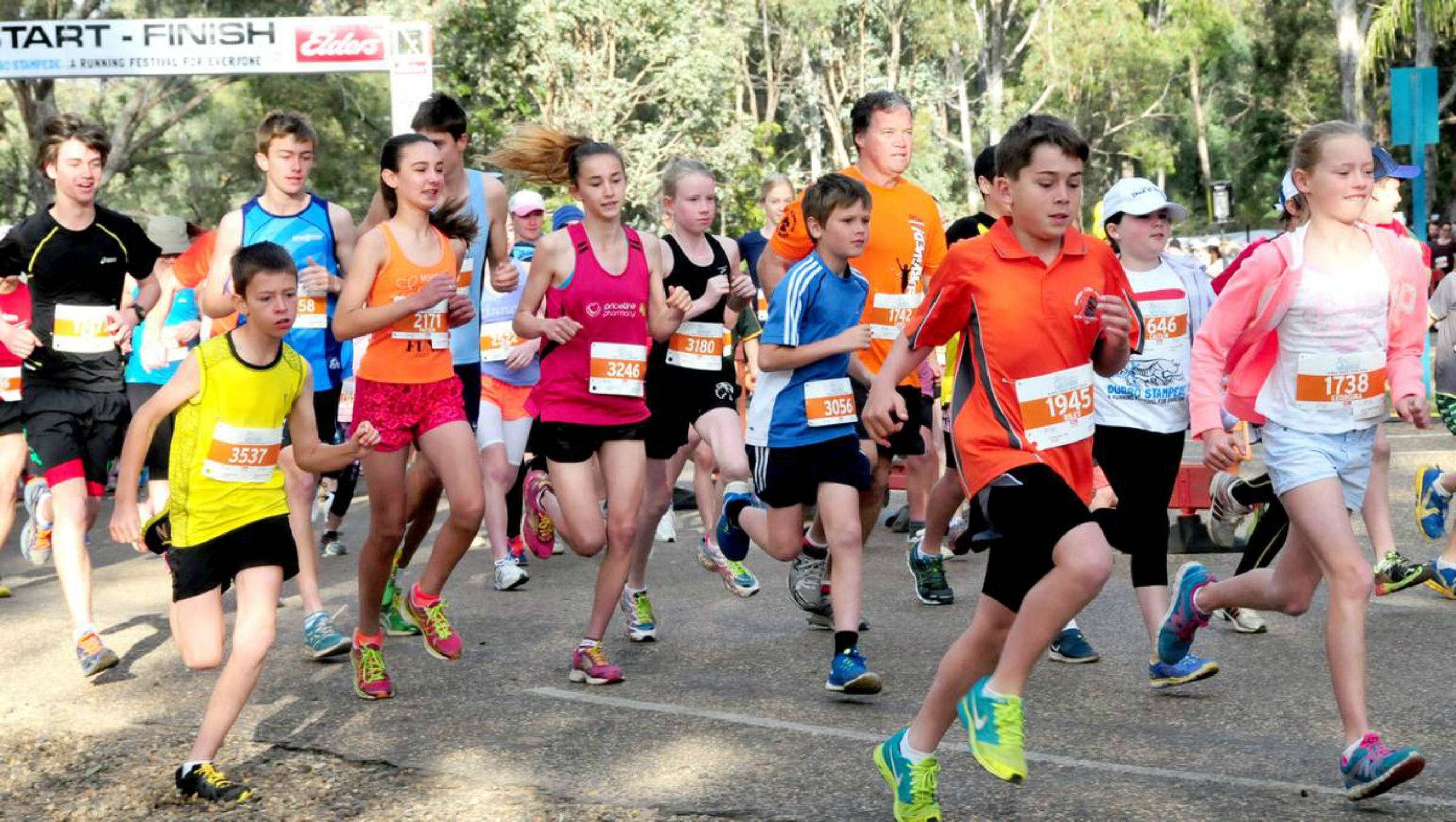 MAAS Group Dubbo Stampede Running Festival - Accommodation in Surfers Paradise