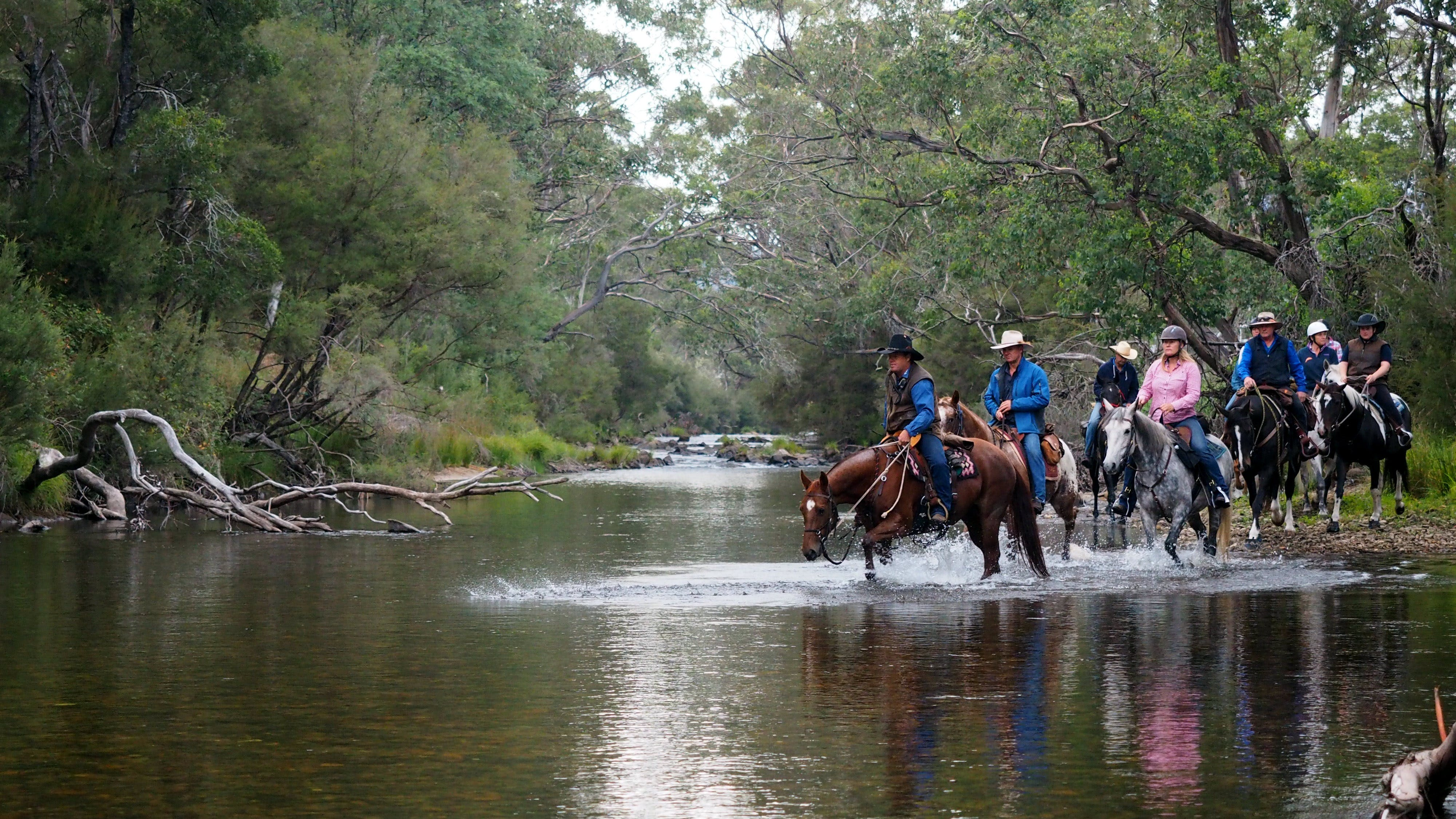 The Man From Snowy River Bush Festival - Accommodation in Surfers Paradise