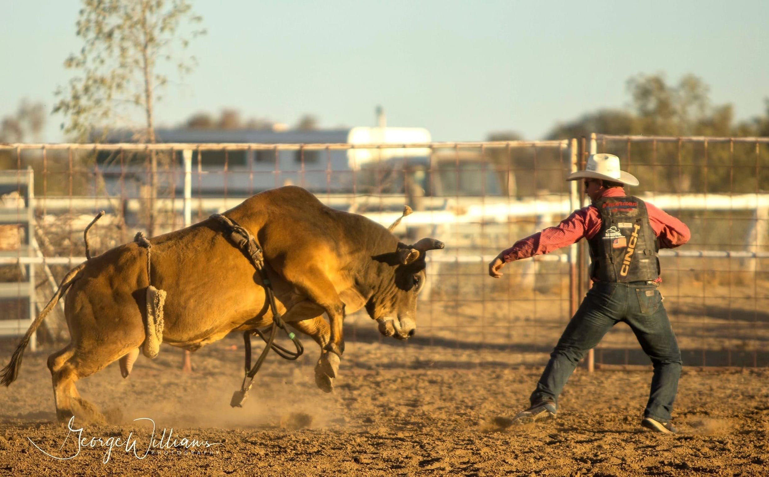 Walgett Charity Bushman's Carnival Rodeo and Campdraft - Accommodation in Surfers Paradise