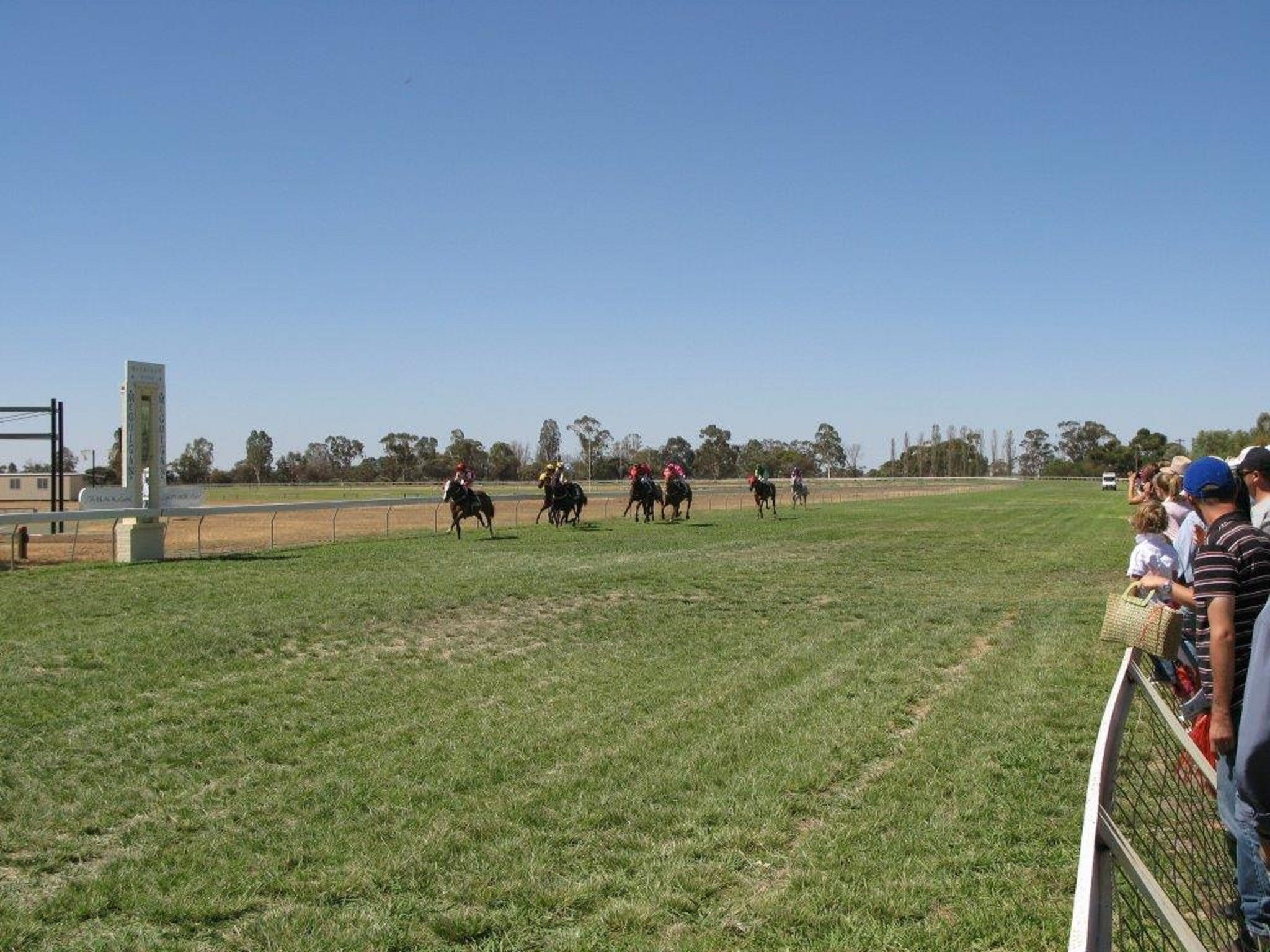 Balranald Races -Derby Day - Accommodation in Surfers Paradise