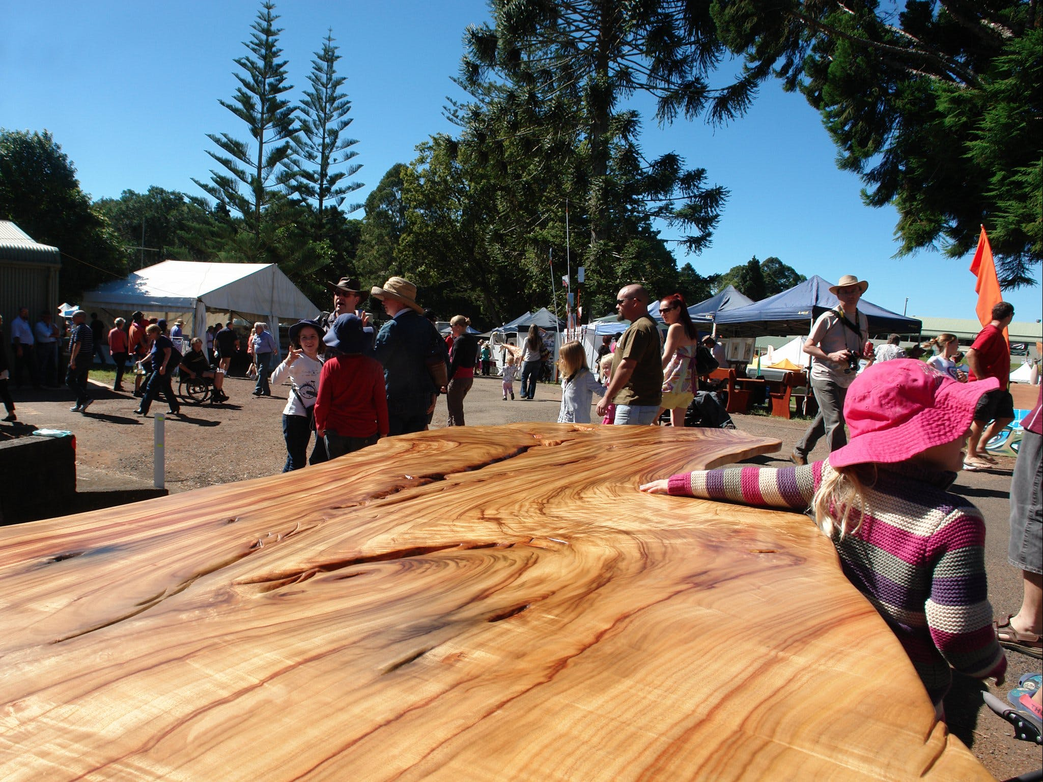 Maleny Wood Expo From Seed to Fine Furniture - Accommodation in Surfers Paradise