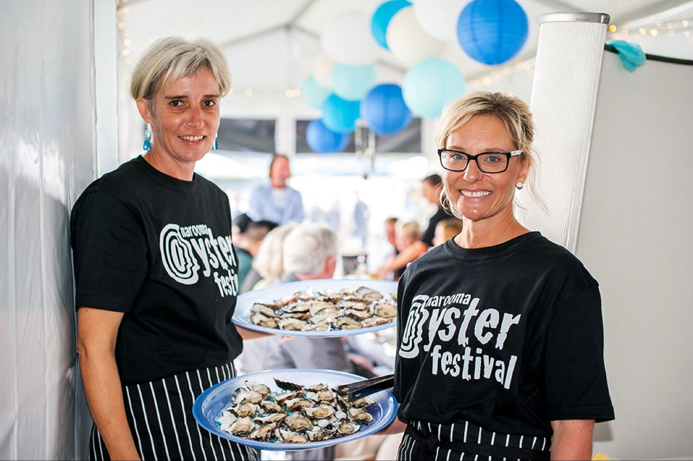 Narooma Oyster Festival - Accommodation in Surfers Paradise