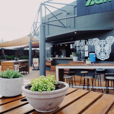 Fat Dogz - Accommodation in Surfers Paradise
